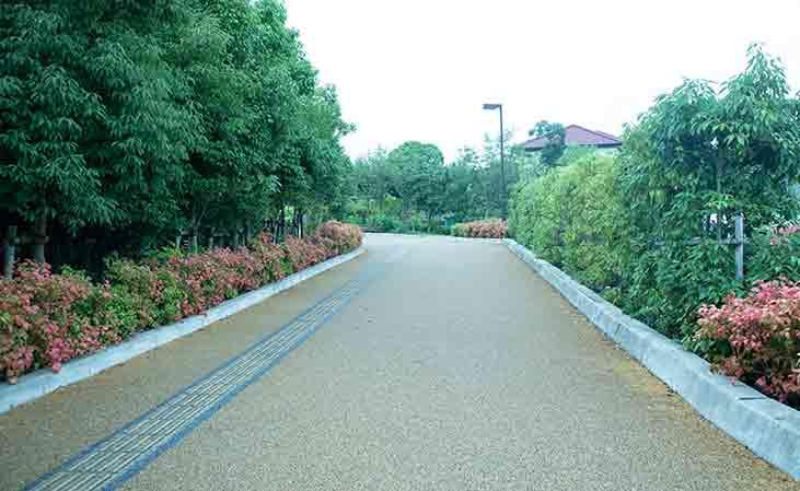 公園の道路